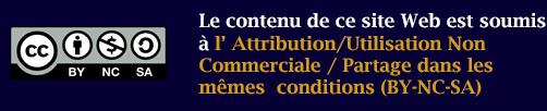 Attribution-Pas d'utilisation commerciale-Partage dans les mêmes conditions 4.0 International (CC BY-NC-SA 4.0)